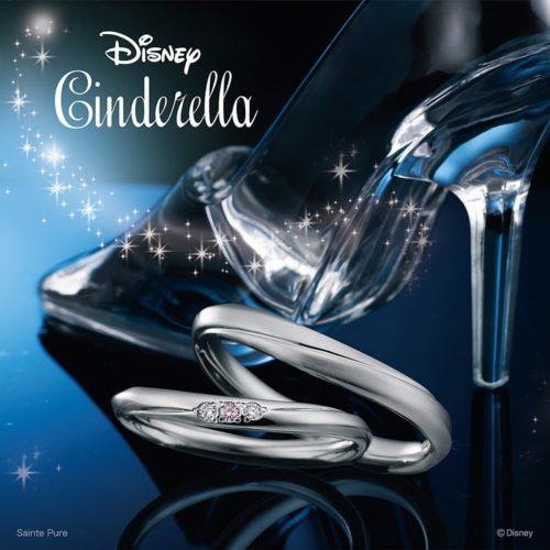 Disney Cinderella Carry on Dream~キャリーオンドリーム~