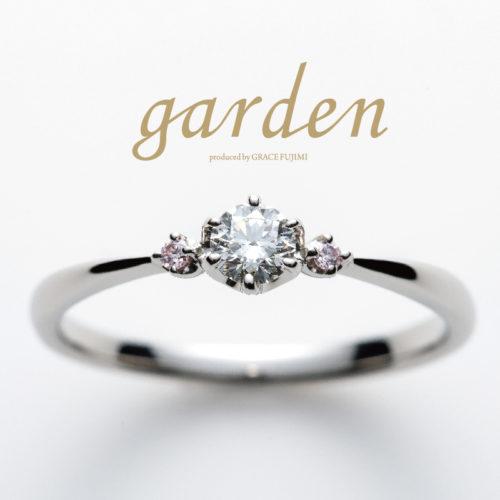 リトルガーデンの結婚指輪でパーチ