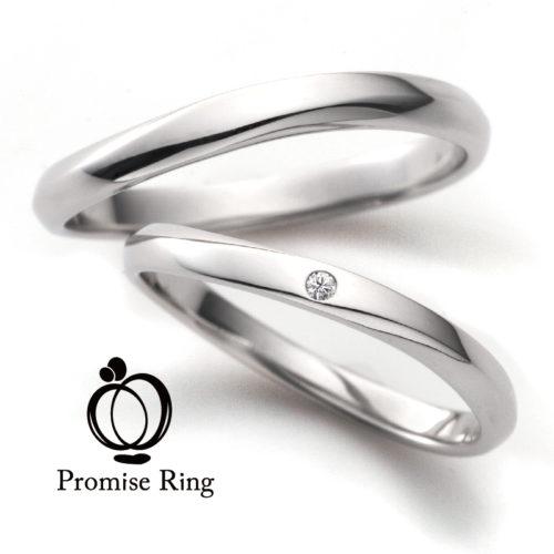 Promise Ring U&I
