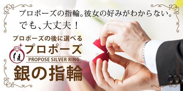 人気のプロポーズプランで銀の指輪