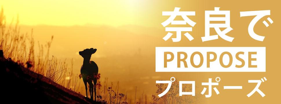 奈良のプロポーズ特集のイメージ