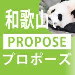 和歌山のプロポーズスポット6選