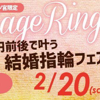 2本で10万円で揃う結婚指輪