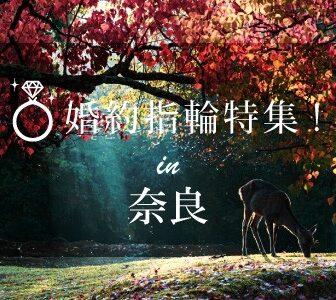 奈良の婚約指輪特集のイメージ