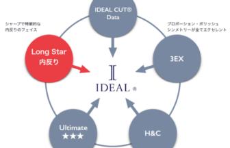 アイデアルの厳しい基準